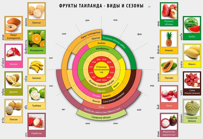 таблица сезон фруктов в Тайланде фото