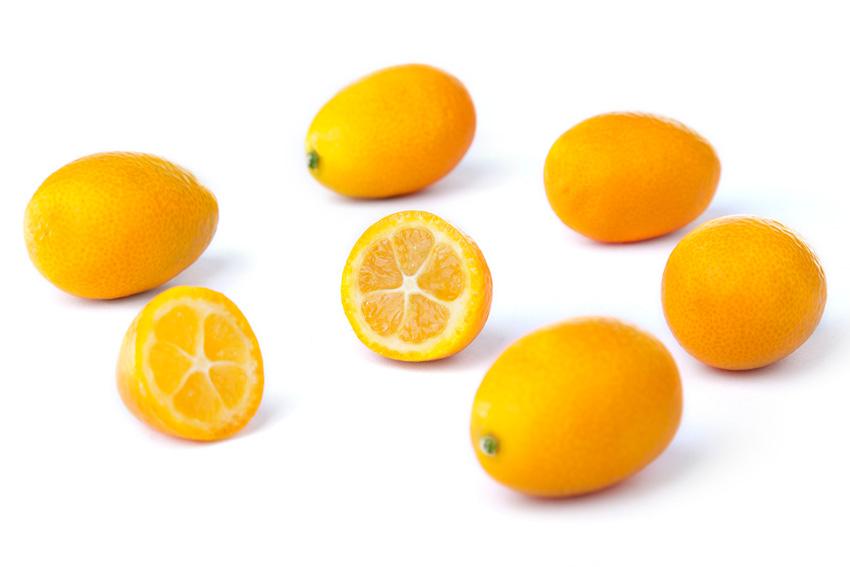4664кумкват - мини апельсинчик