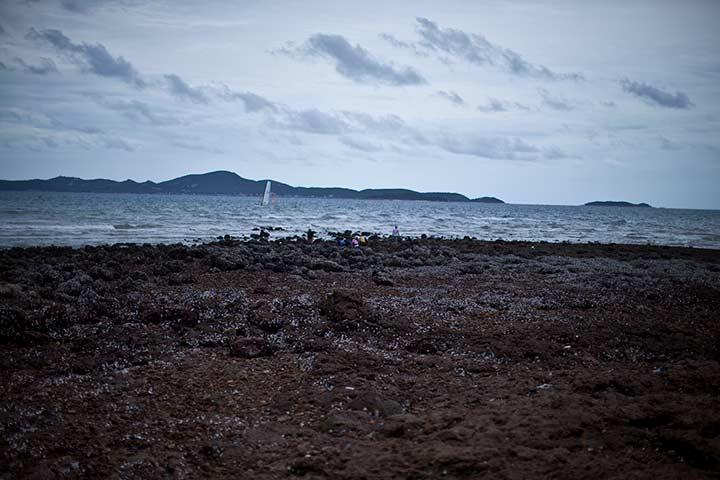 яхты у пляжа