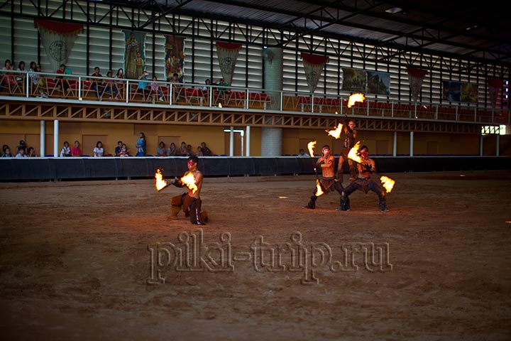 Pipo Pony Club - Ферма Пипо Пони в Паттайе