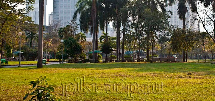 Парк Люмпини в Бангкоке ( Lumpini Park) - Куда сходить в Бангкоке?
