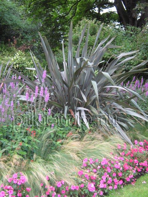 Лондон: Кенсингтонские сады (фото)