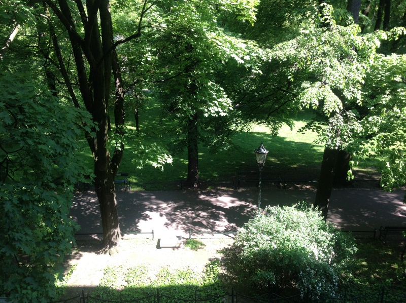 Вид из нашего окна (фото)