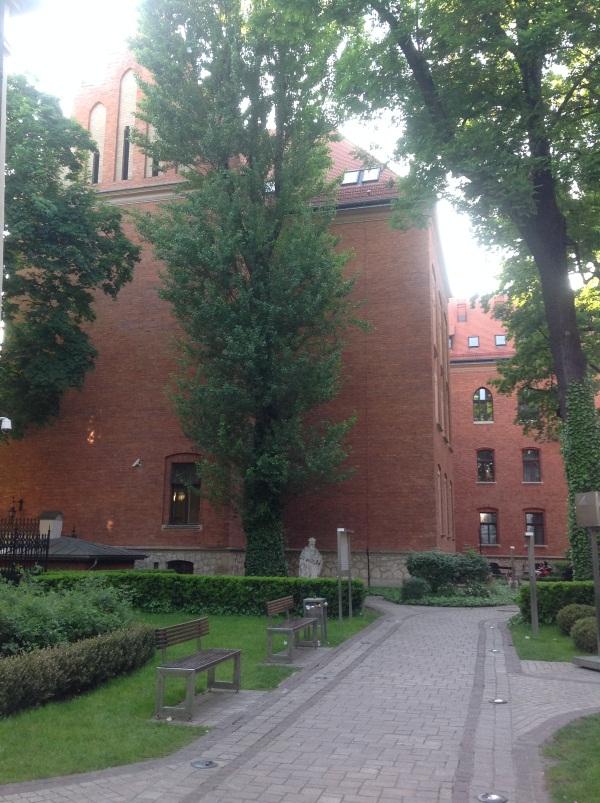 Краков достопримечательности: Музей Collegium Maius (фото)