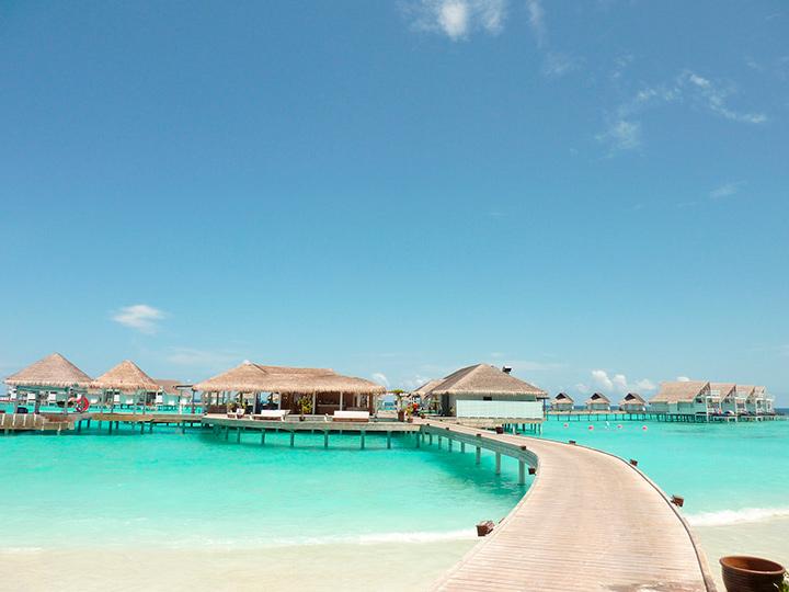 поехать на Мальдивы без визы