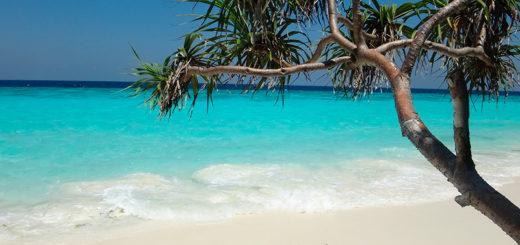 Отели Пхукета с пляжем 4 звезды фото