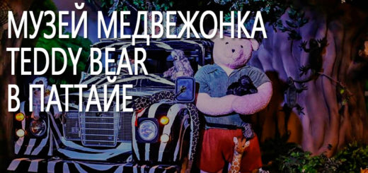 Музей медвежонка Teddy Bear в Паттайе