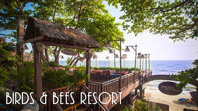 Туры в Birds & Bees Resort