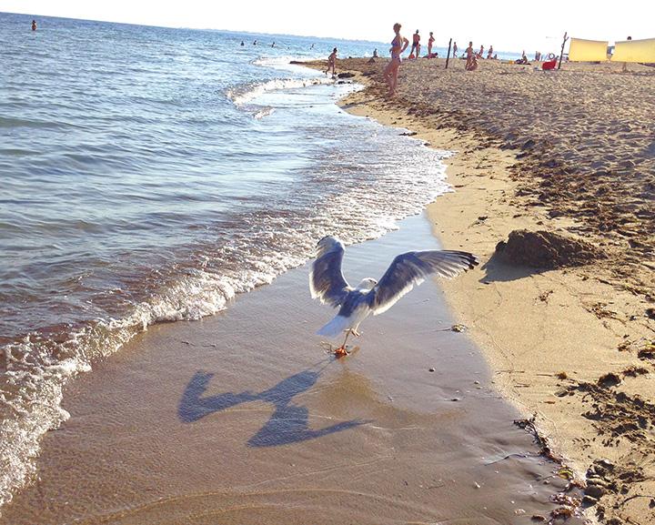 пляжи Евпатории