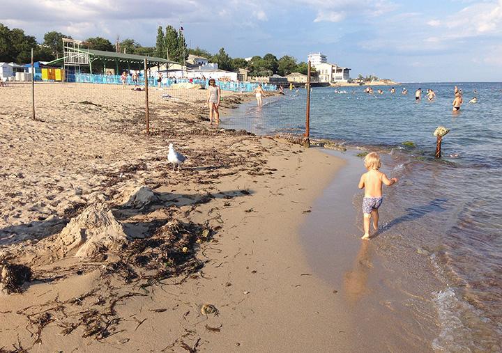 Дашон на одном из пляже Евпатории летом