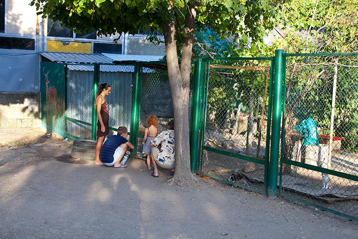 тропикпарк фото Евпатория