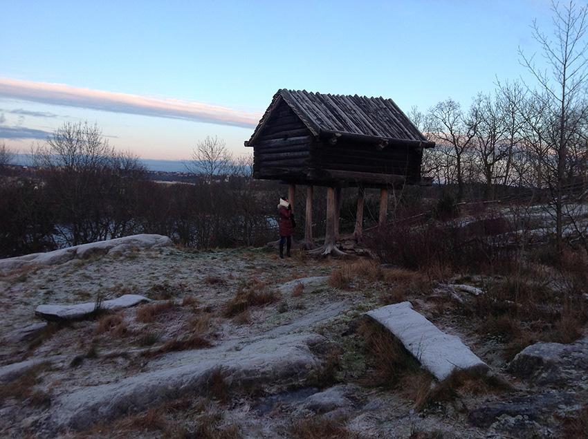 Музей под открытым небом Skansen