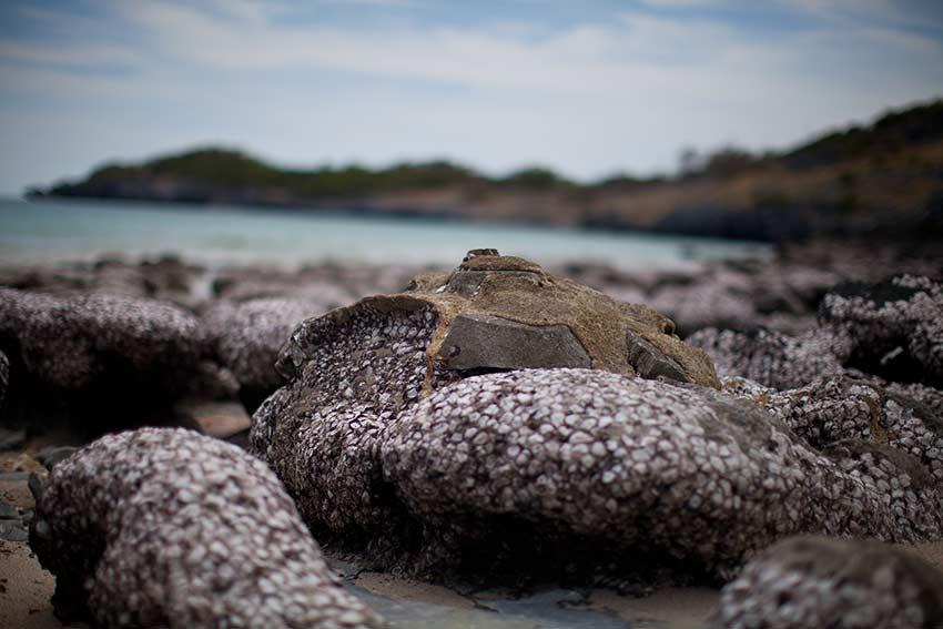 вот такие живописные камушки есть на пляже тампанг