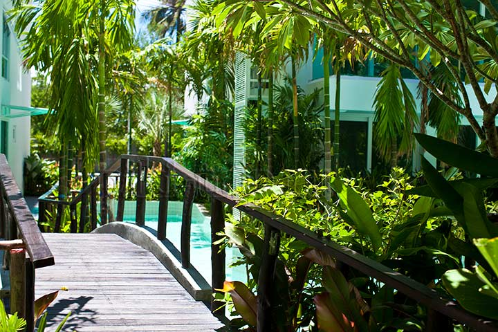 Джунгли Амазонки ждут гостей:)