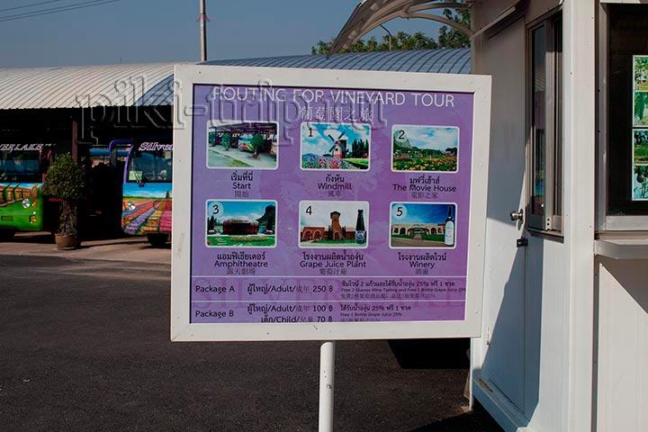 цены на экскурсии по винограднику сильвер лейк