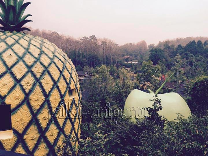 Река Квай - фруктовый рай фото домиков