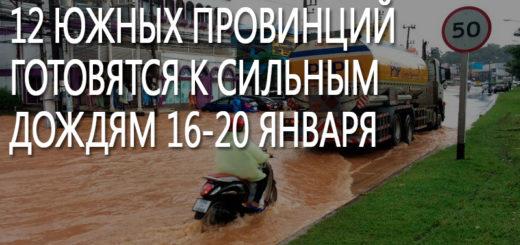 12 южных провинций готовятся к сильным дождям 16-20 января