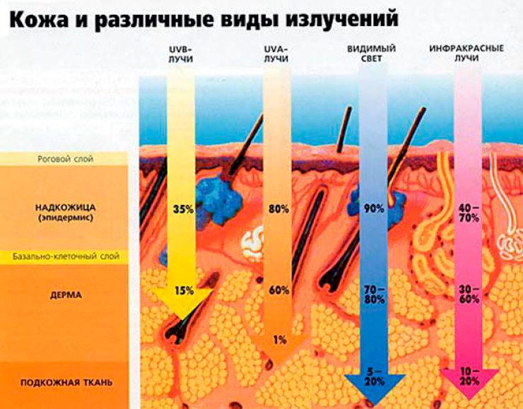 Таблица как солнце и его лучи воздействуют на кожу и ее слои