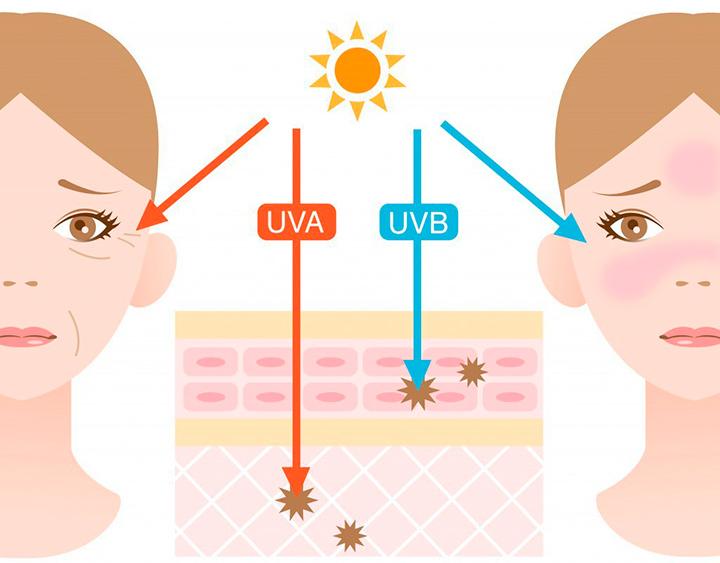 ВЛияние УФ-А и УФ-В лучей на кожу наглядно