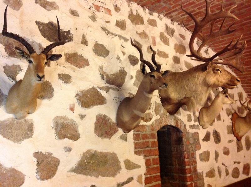 Тракайский замок: в музее замка (фото)