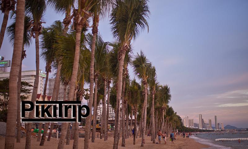 пальмы на пляже Джомтьен