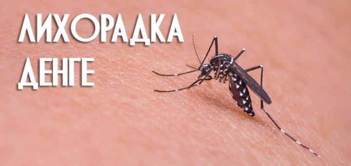 Лихорадка денге распространяется в Бангкоке