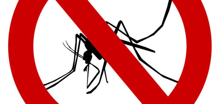 денге в таиланле 2018