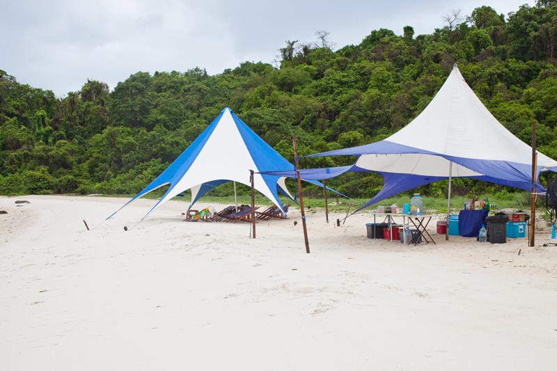 новые шатры и лежаки