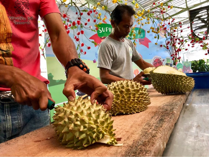 дегустация дуриана