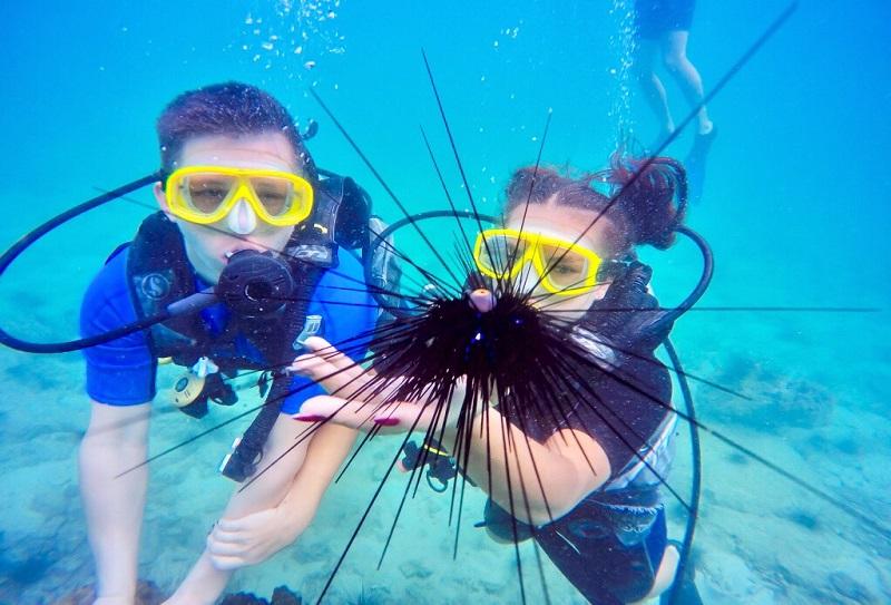 подводный мир Паттайи