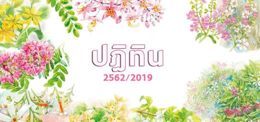 какой год в таиланде сейчас